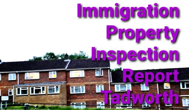 Immigration Property Inspection Report Tadworth Surrey